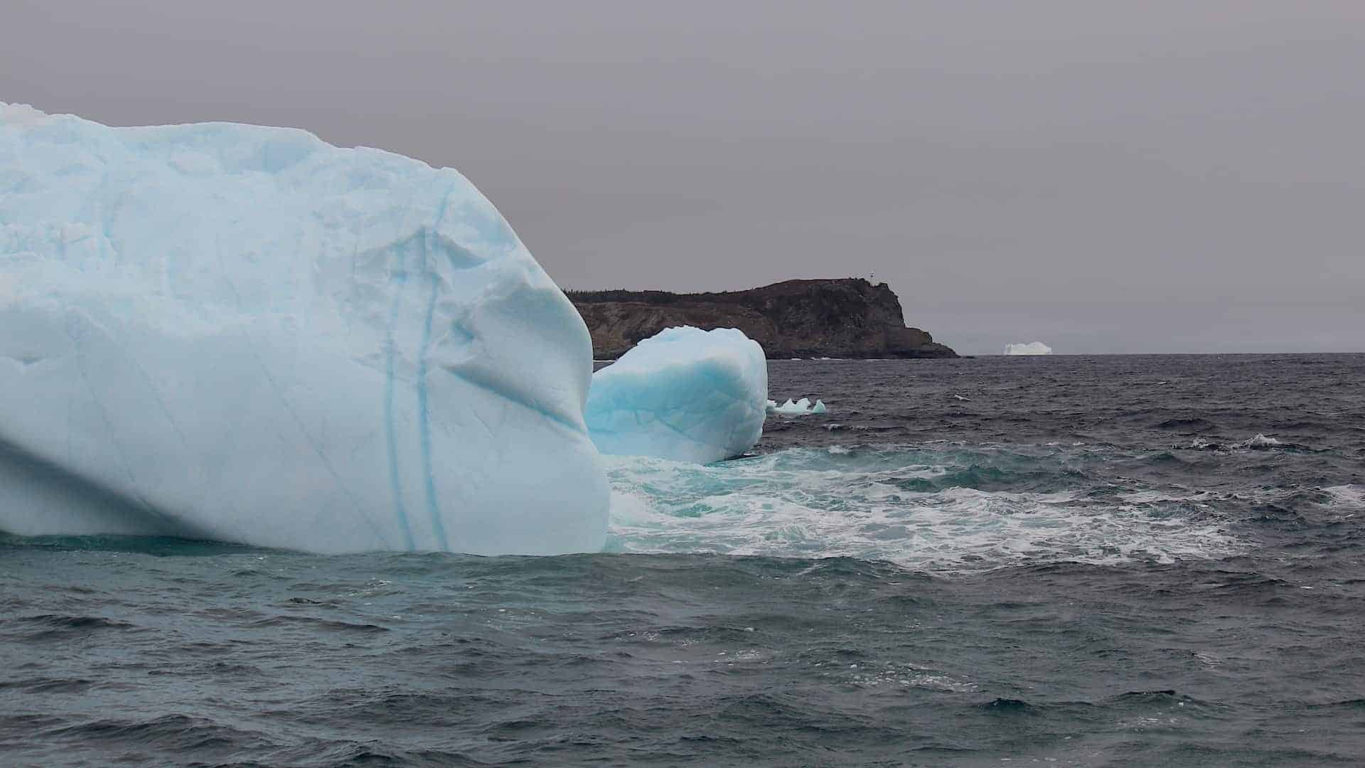 Iceberg season around the St. John's area typically runs May through to mid / late June.  Although we are at the end of Iceberg Alley and see fewer bergs than northern Newfoundland, the bergs here are often very dramatic as they near the end of their journey.